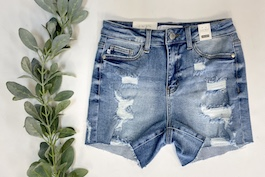 Judy Blue High Rise Distressed Shorts