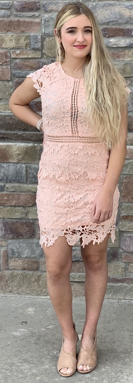 """New Romance"" Blush Crochet Lace Cap Sleeve Dress"